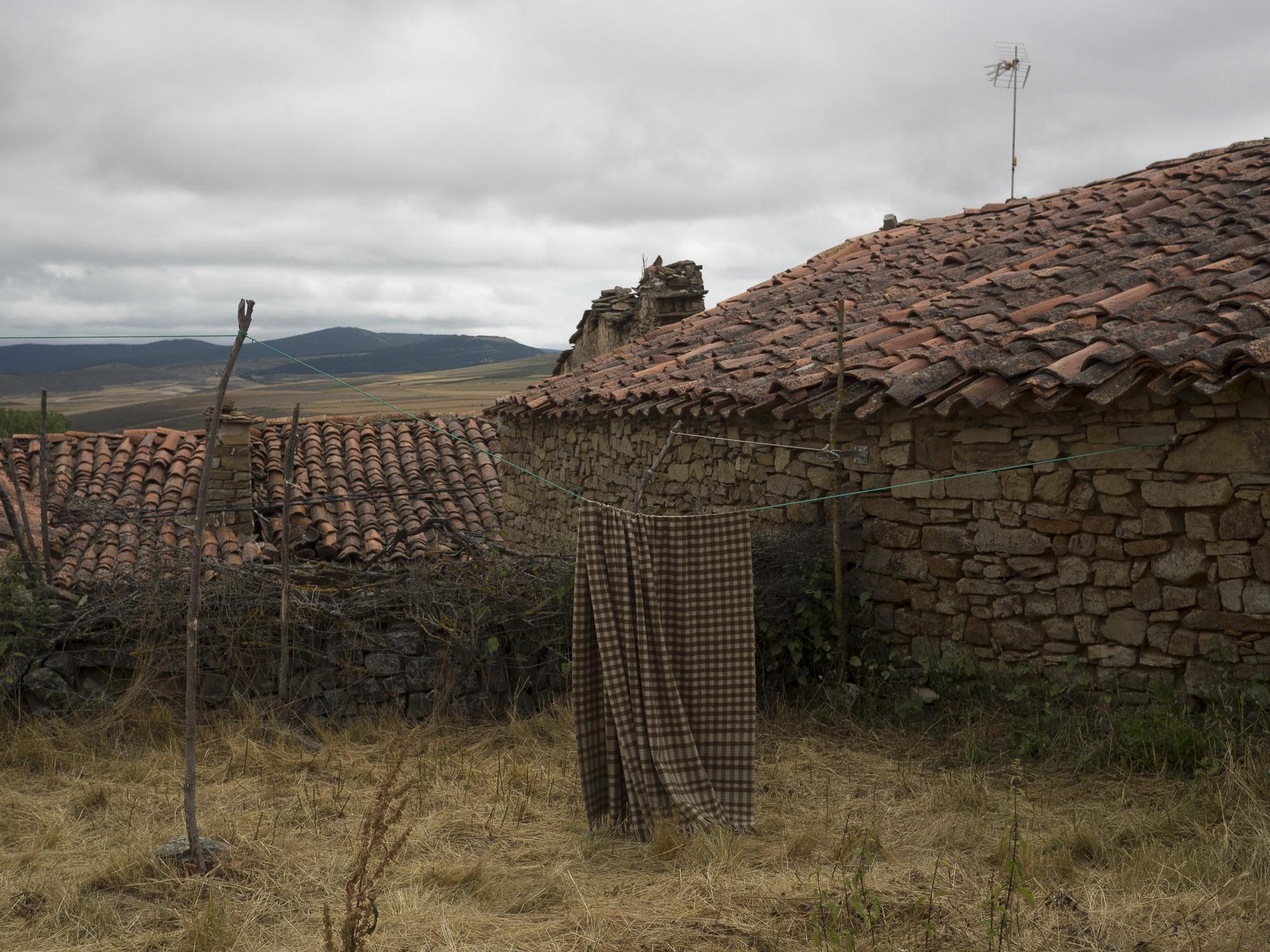 Navabellida, Soria